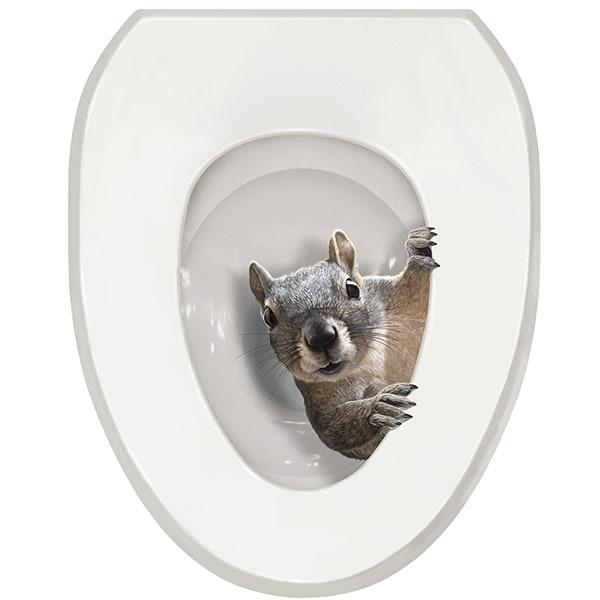 squirrel toilet seat decal sticker