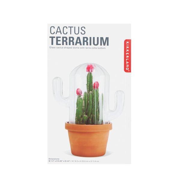 Cactus Terrarium What On Earth Cy3762