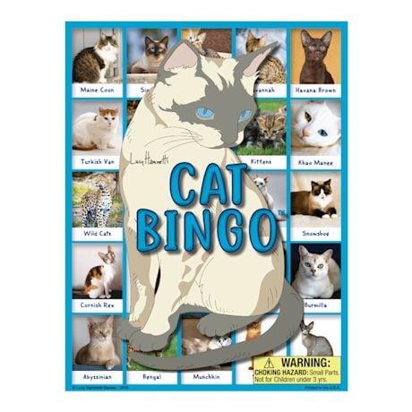 Family Fun Bingo