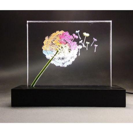 Dandelion Light Impression Decor