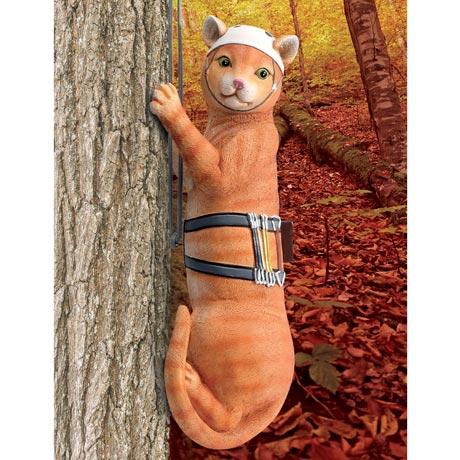 Tabby Cat Tree Climber
