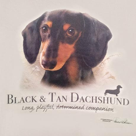 Dog Breed Shirts - Black & Tan Dachshund