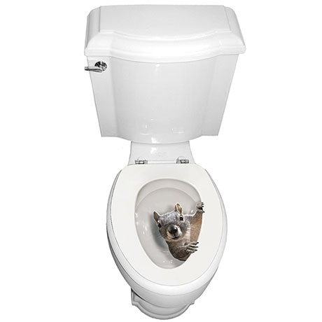 It's a Squirrel! Toilet Seat Tattoo Decal