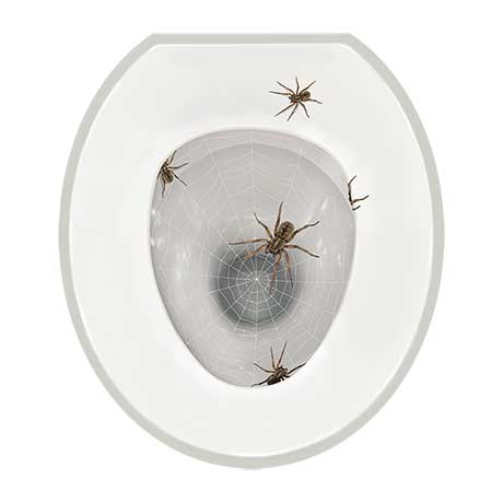 Realistic Toilet Tattoos- Scary Spiders