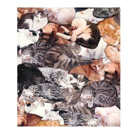 Cat Lovers Fleece Single Pillowcase