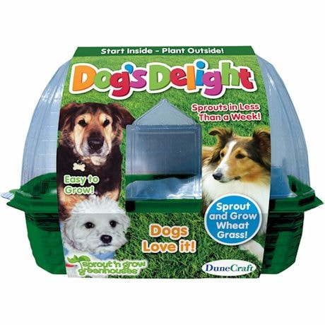 Dogs Delight Greenhouse