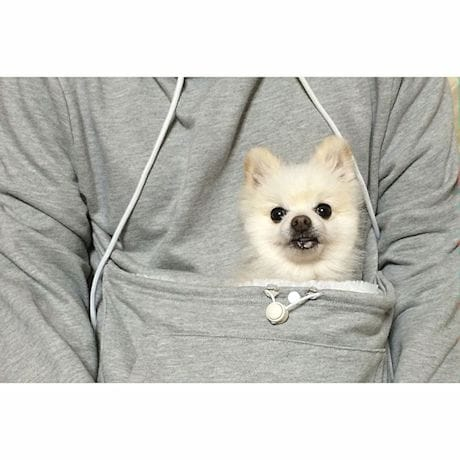 Mewgaroo Pet Holder Hoodie