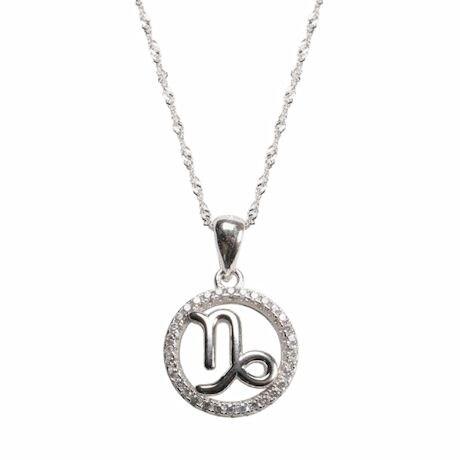 Capricorn Horoscope Necklace