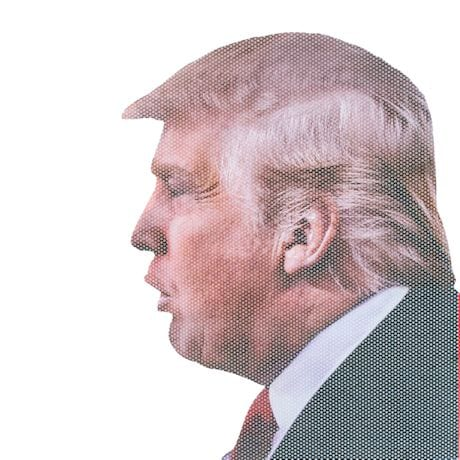 Ride with Donald Trump Car Window Decal Sticker Cling