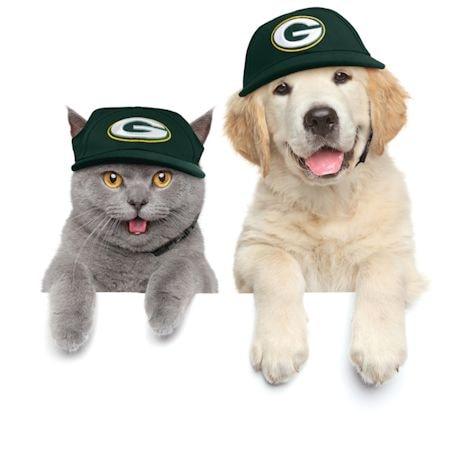 NFL Pet Hats