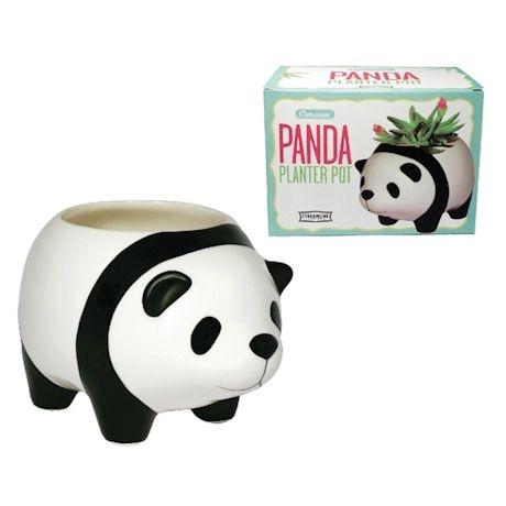Animal Planters - Panda