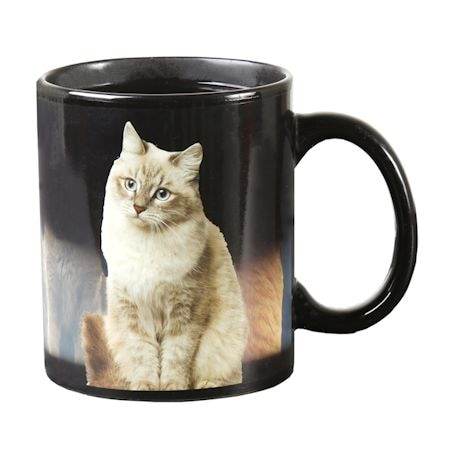 One Cat Leads to Another Magic Heat-Changing Coffee Mug