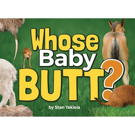 Whose Baby Butt? Book
