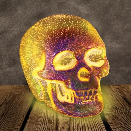 3-D LED Lit Skull Light - Silver Mercury Glass Table Desk Accent Lamp