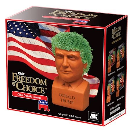 President Donald Trump Chia Pet Head