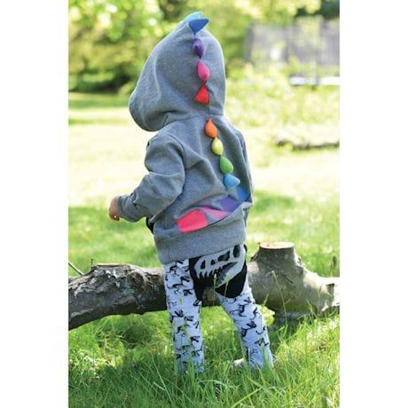 Dinosaur Kids Pants Or Hoodies