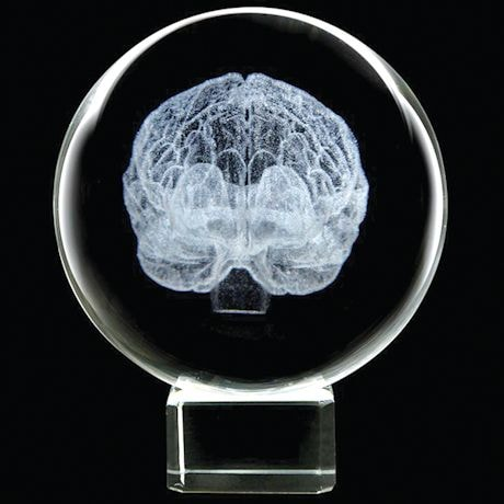 Laser Etched LED Lighted Brain in Crystal Sphere