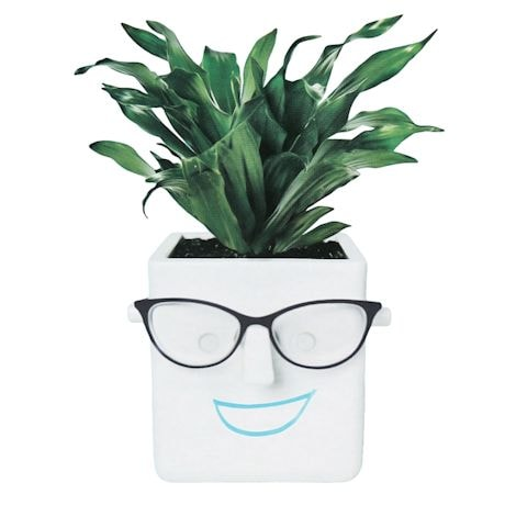 Faceplant Pot