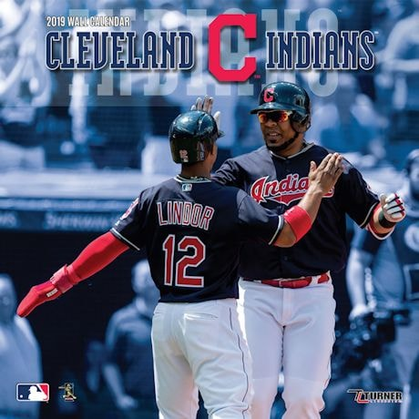 2019 MLB Wall Calendars