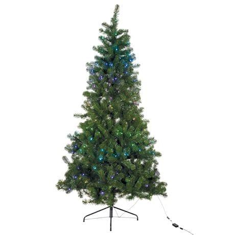 Pre-lit Pine Trees