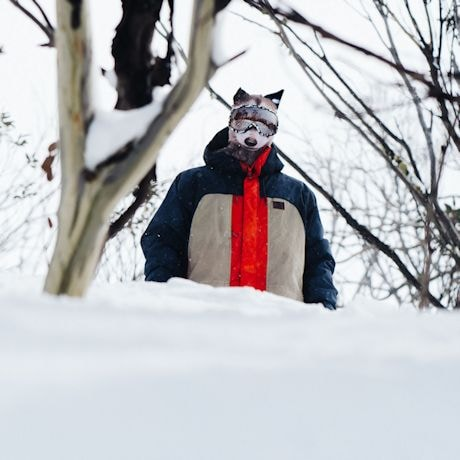 Animal Face Balaclava Ski Mask