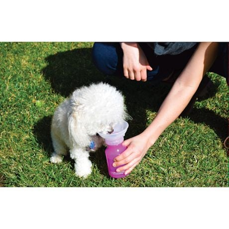 Autodogmug Mini - Portable Water Bowl For Puppies And Small Dogs - 14 Ounce - Pink