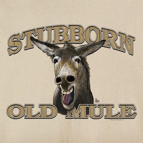 Animal Wisdom T-Shirts - Old Mule