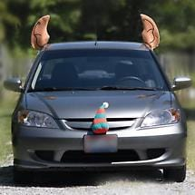 ELF CAR COSTUME
