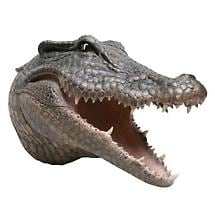 HEAD TURNING 3D WALL PLAQUE - CROCODILE