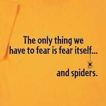 THE ONLY THING WE HAVE TO FEAR IS FEAR ITSELF... AND SPIDERS SHIRT