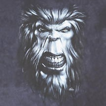 BIGFOOT'S GAZE T-SHIRT