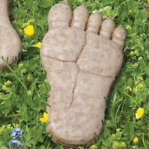 BIGFOOT STEPPING STONE - RIGHT FOOT