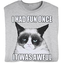 I HAD FUN ONCE, IT WAS AWFUL CAT SHIRT