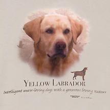 Dog Breed Shirts - Yellow Lab