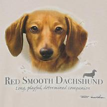 Dog Breed Shirts - Red Dachshund