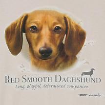 Dog Breed Shirts - Red Dachshund