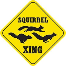 Crossing Squirrel Sign