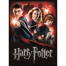 Harry Potter & Fantastic Beasts Poster Puzzles - Hogwarts School