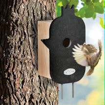 Mod Wood Bird House