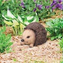 Hedgehog Key Keeper