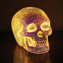3-D Led Skull Light
