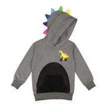 Dinosaur Kids Pants Or Hoodies