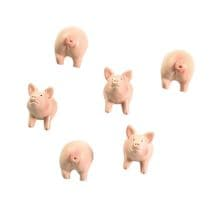 Pig And Hedgehog Magnet Sets