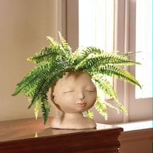 Head Of A Lady Planter